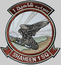 badge-Shaheen-1-Sqn-Al-Dhafra-ARE