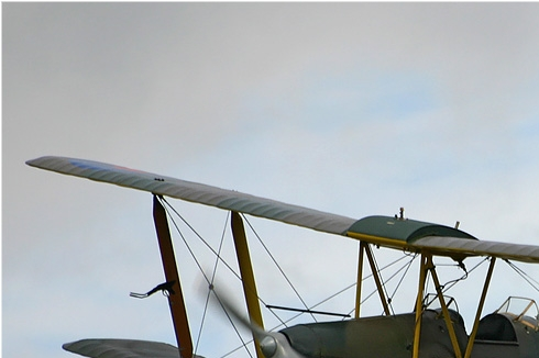 Photo#769-1-De Havilland DH.82A Tiger Moth II