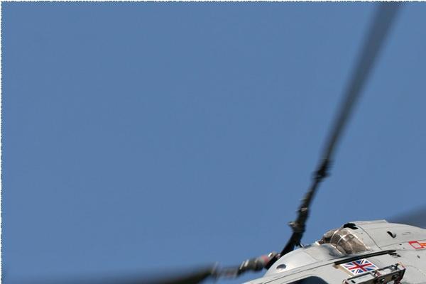 Photo#974-1-Westland Lynx HMA8