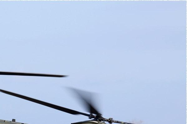 Photo#214-2-Boeing Chinook HC2