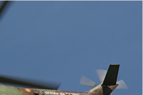 Photo#59-2-Aerospatiale SA330B Puma