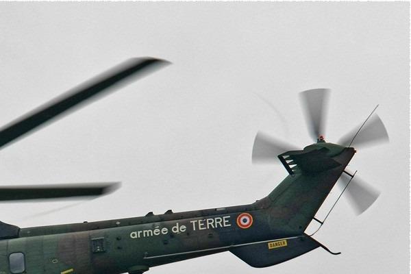 Photo#774-2-Eurocopter AS532UL Cougar