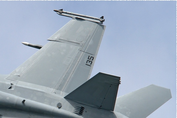 Photo#819-2-Boeing F/A-18F Super Hornet