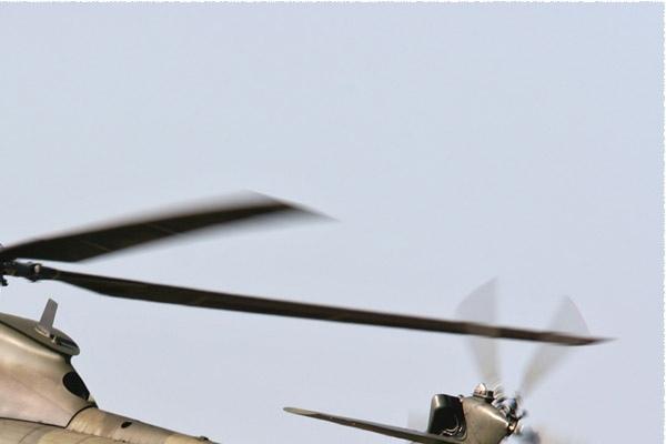 Photo#982-2-Aerospatiale Puma HC1