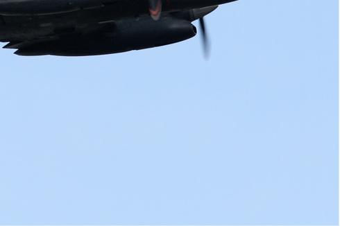 Photo#207-4-Embraer EMB-121 Xingu