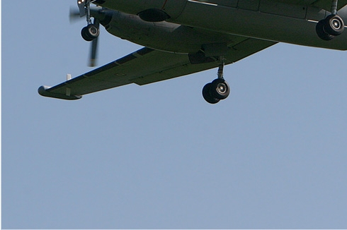 Photo#288-3-Dassault-Breguet Atlantique 2