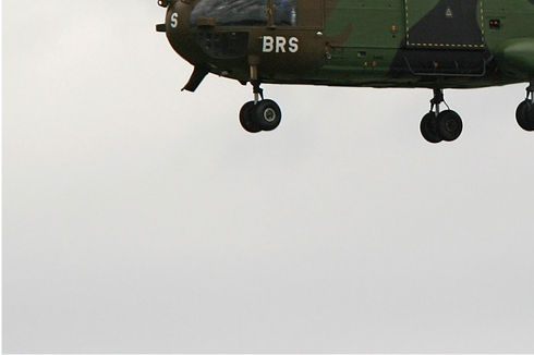 Photo#295-3-Aerospatiale SA330B Puma