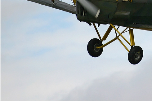 Photo#769-3-De Havilland DH.82A Tiger Moth II