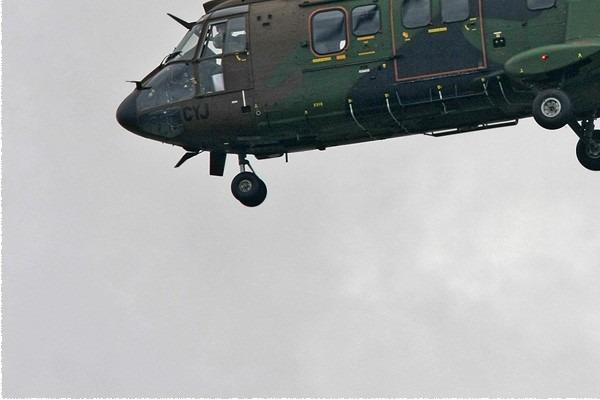 Photo#774-3-Eurocopter AS532UL Cougar