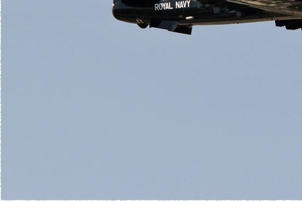 Photo#954-3-Hawker Siddeley Hawk T1