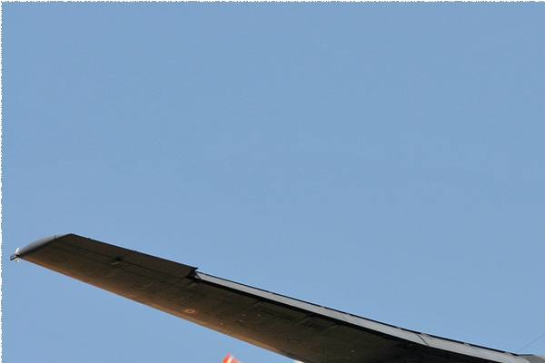 Photo#1565-1-Transall C-160R
