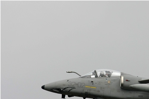Photo#1636-1-AMX International A-11A