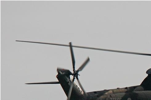 Photo#1877-1-Aerospatiale SA330B Puma