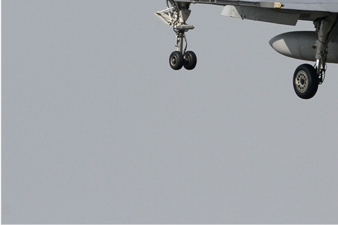 Photo#1656-3-Saab JAS39D Gripen
