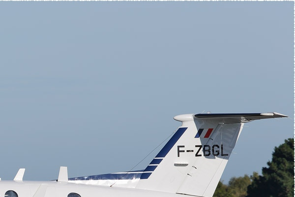 10080b-Hawker-Beechcraft-350ER-King-Air-France-douanes
