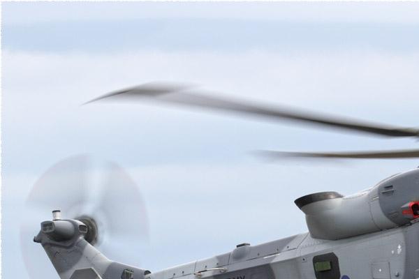 Photo#11556-1-AgustaWestland Wildcat AH1