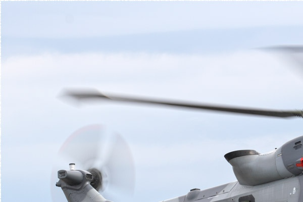 Photo#11557-1-AgustaWestland Wildcat AH1