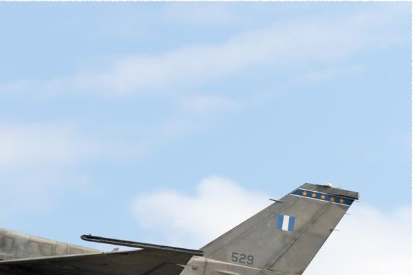 Photo#11099-2-Lockheed Martin F-16C Fighting Falcon