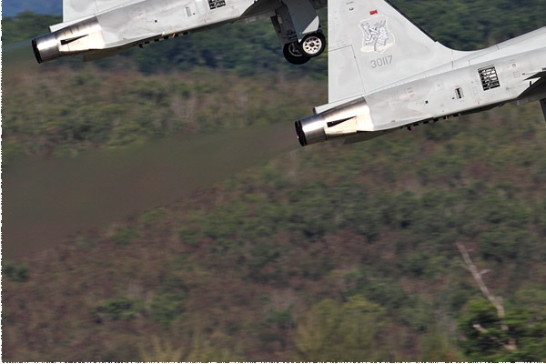 11283d-Northrop-F-5F-Tiger-II-Taiwan-air-force