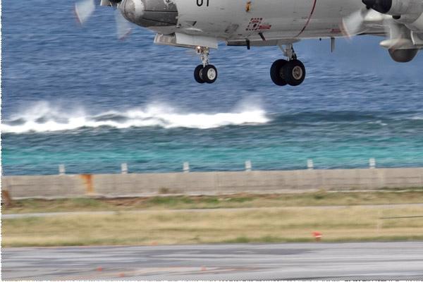 Photo#11445-3-Lockheed P-3C Orion