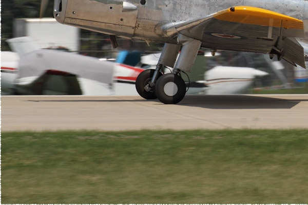 Photo#11689-3-De Havilland Chipmunk T20