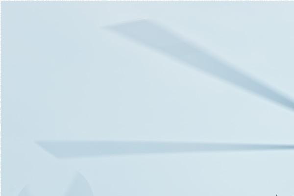 Photo#2383-1-Dassault-Dornier Alphajet E