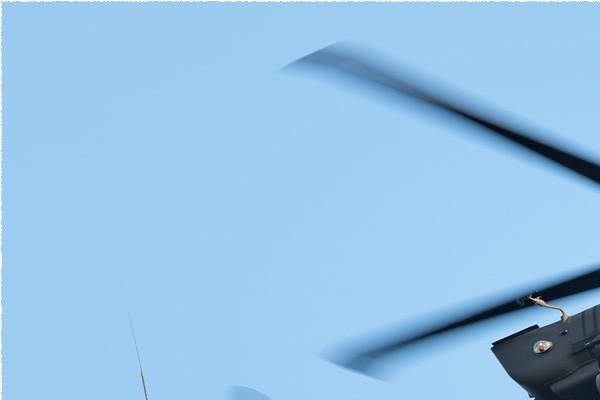 Photo#2764-1-Transall C-160R