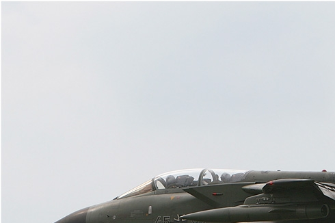 Photo#2912-1-Panavia Tornado IDS