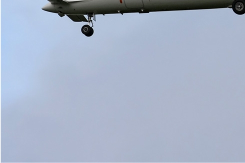 Photo#2334-3-Piaggio VC-180A Avanti