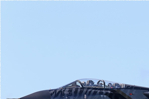 Photo#3227-1-Panavia Tornado ECR