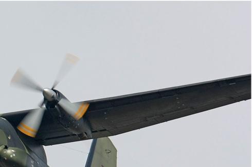 Photo#3922-2-Transall C-160D