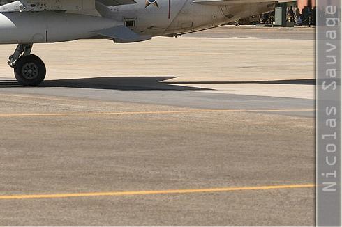 Photo#3147-4-AMX International A-1A
