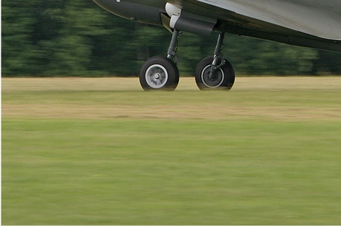 Photo#3537-3-Curtiss P-40N Warhawk