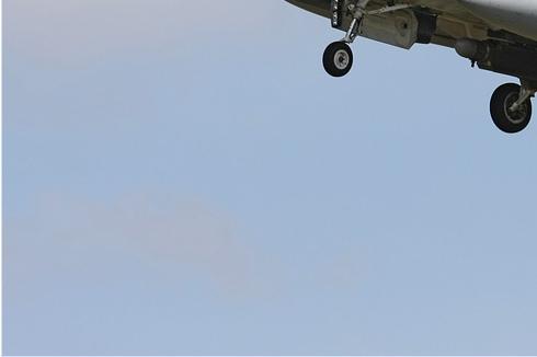 Photo#3627-3-General Dynamics F-16AM Fighting Falcon