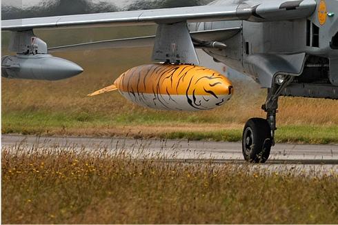 Photo#3738-3-Panavia Tornado IDS