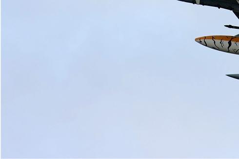 Photo#3739-3-Panavia Tornado IDS