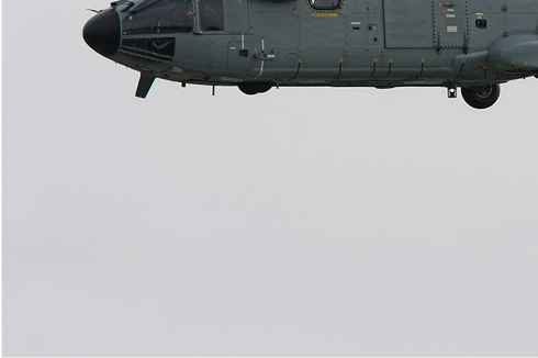 Photo#3742-3-Eurocopter AS332M Super Puma