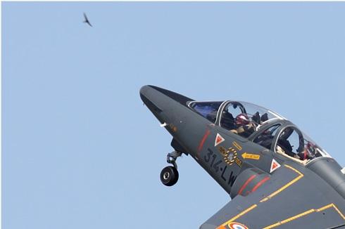 Photo#4359-1-Dassault-Dornier Alphajet E