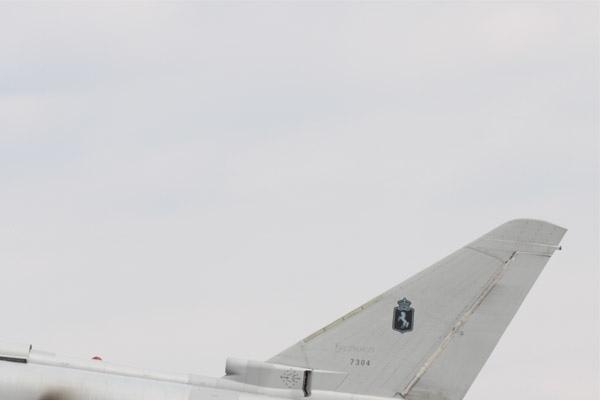 Photo#4003-2-Eurofighter F-2000A Typhoon