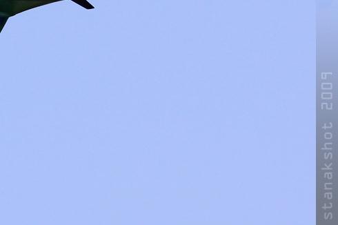 Photo#4380-4-Pilatus PC-7 Turbo Trainer