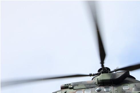 Photo#5295-1-Eurocopter AS532U2 Cougar