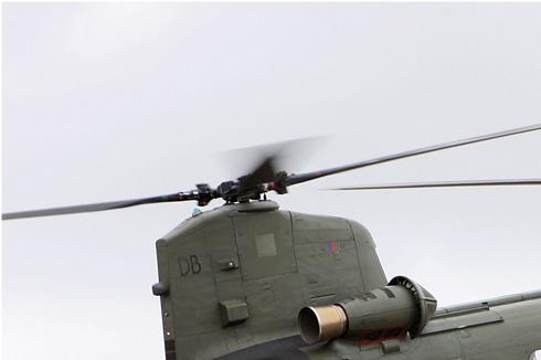 Photo#5350-1-Boeing Chinook HC2
