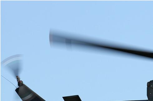 Photo#5479-1-Agusta-Bell AB212AM