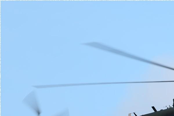 Photo#5790-1-Transall C-160R
