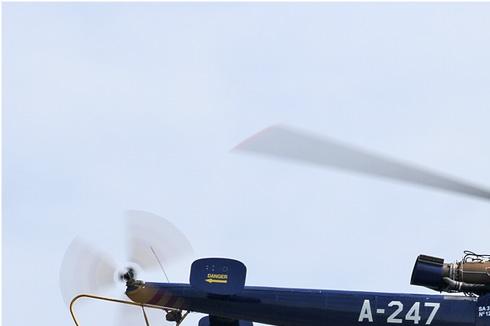 Photo#5932-1-Sud Aviation SA316B Alouette III