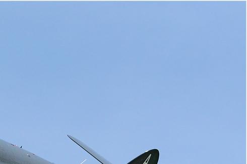 Photo#5171-2-Hawker Sea Hawk FGA6