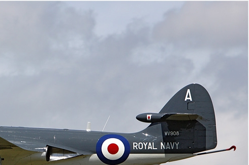 Photo#5172-2-Hawker Sea Hawk FGA6
