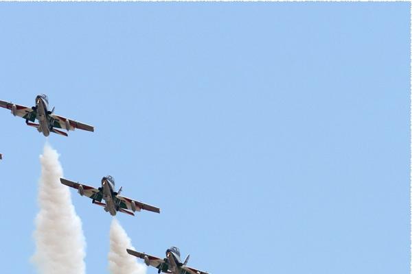 5725b-Aermacchi-MB-339A-PAN-Italie-air-force