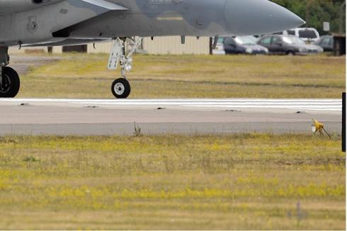 Photo#5091-4-McDonnell Douglas F-15C Eagle