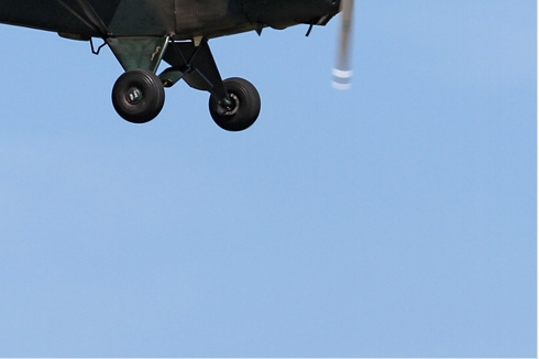 Photo#5895-4-Piper L-18C Super Cub